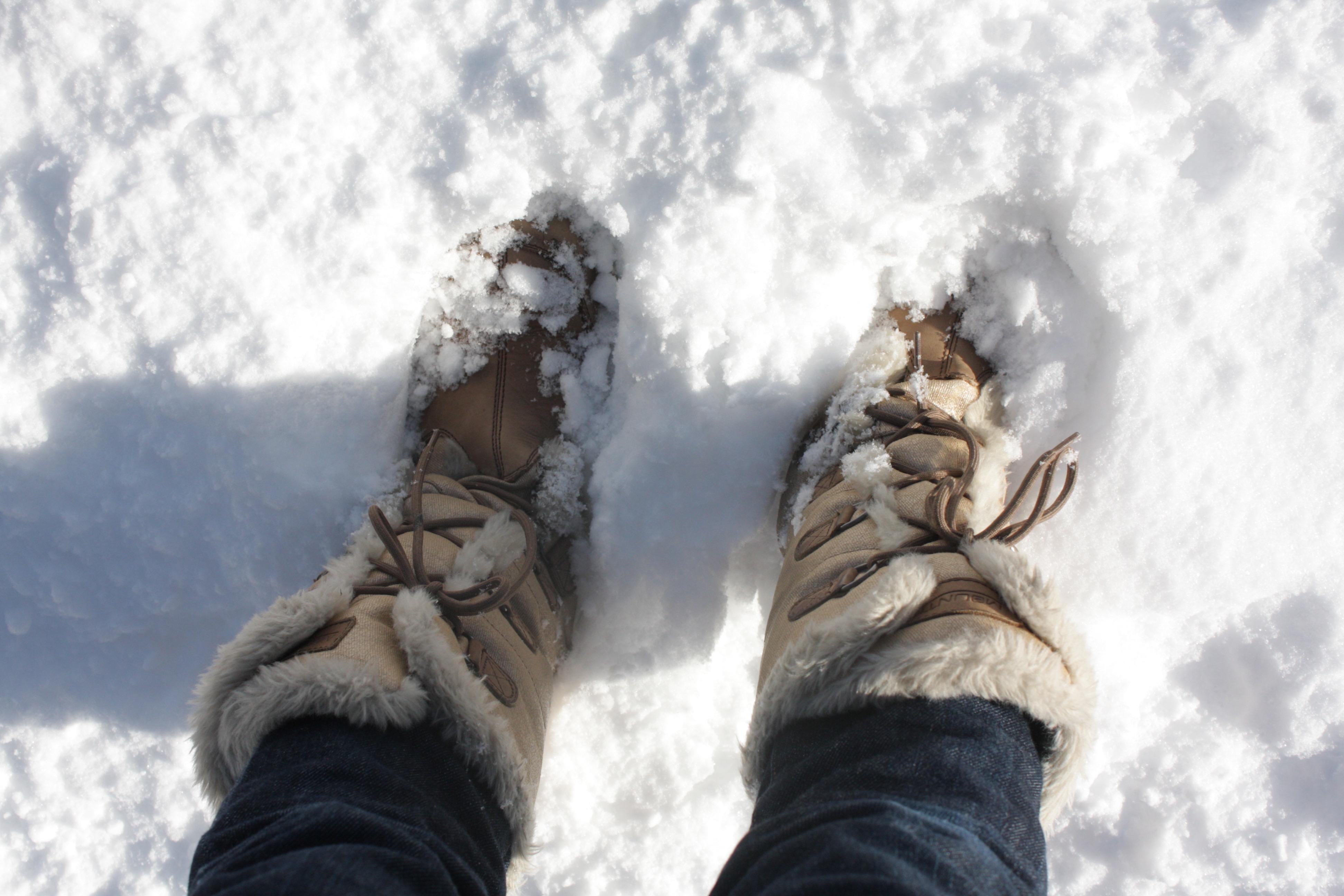 これは、こないだ降った雪。今はすっかり溶けちゃったけど